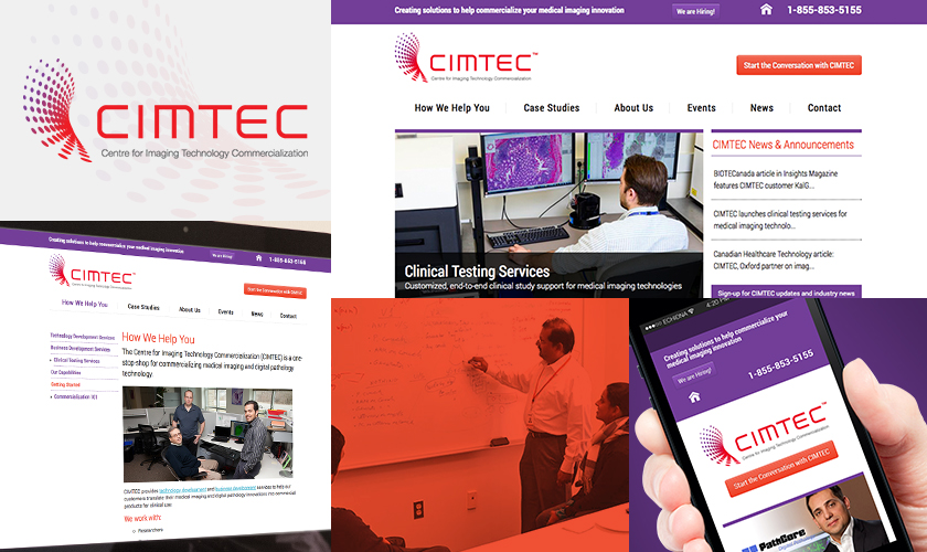 Examples from the CIMTEC website