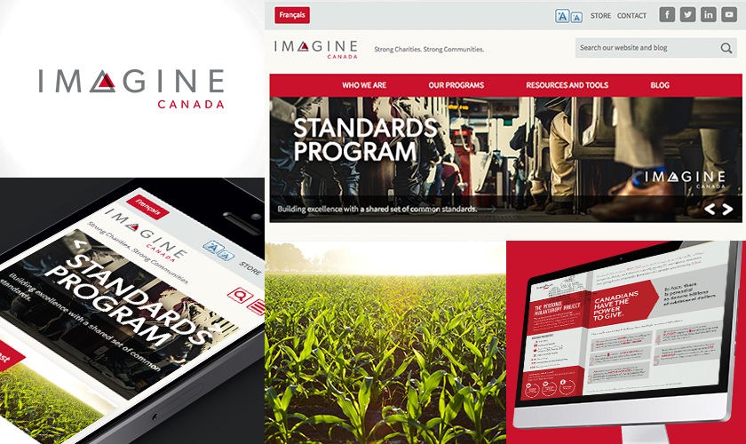 Examples of the Imagine Canada website